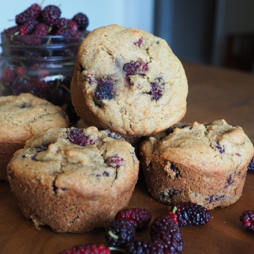 Rustic Mulberry Muffins